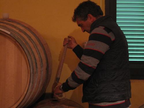 Silvano drawing samples from his barrels...